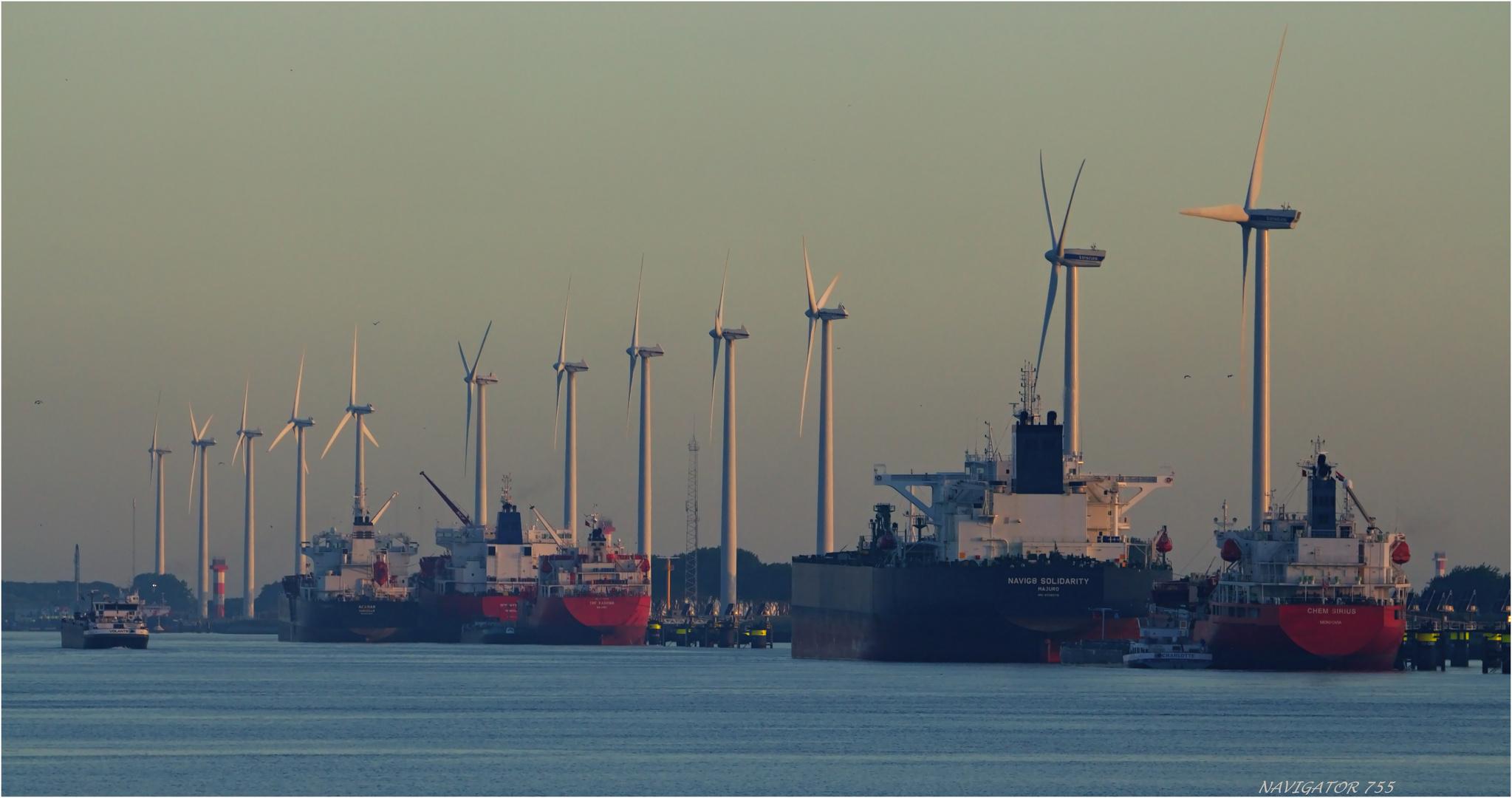 Calandkanal in ersten Licht. Rotterdam
