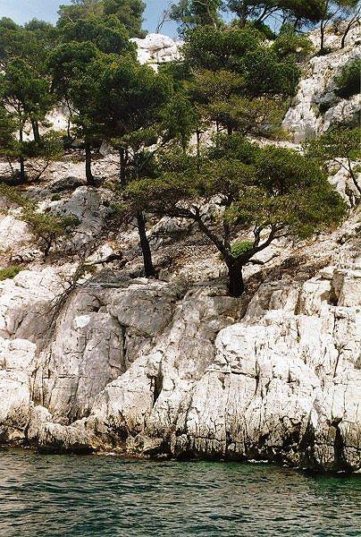 Calanques de Cassis, Bouches du Rhône, SüdFrankreich