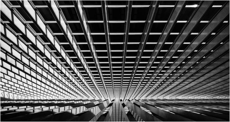 Calatrava Liege S/W