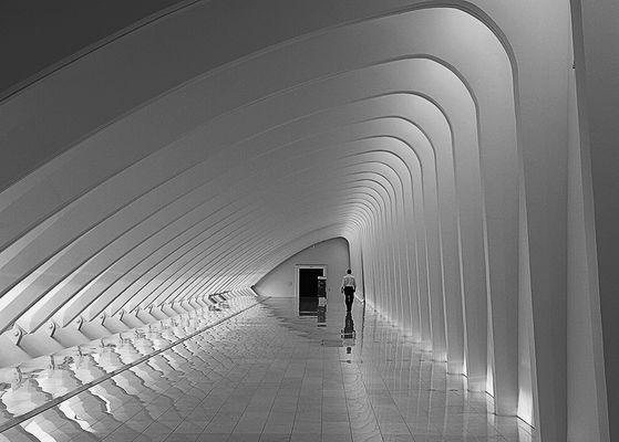 Calatrava - Style