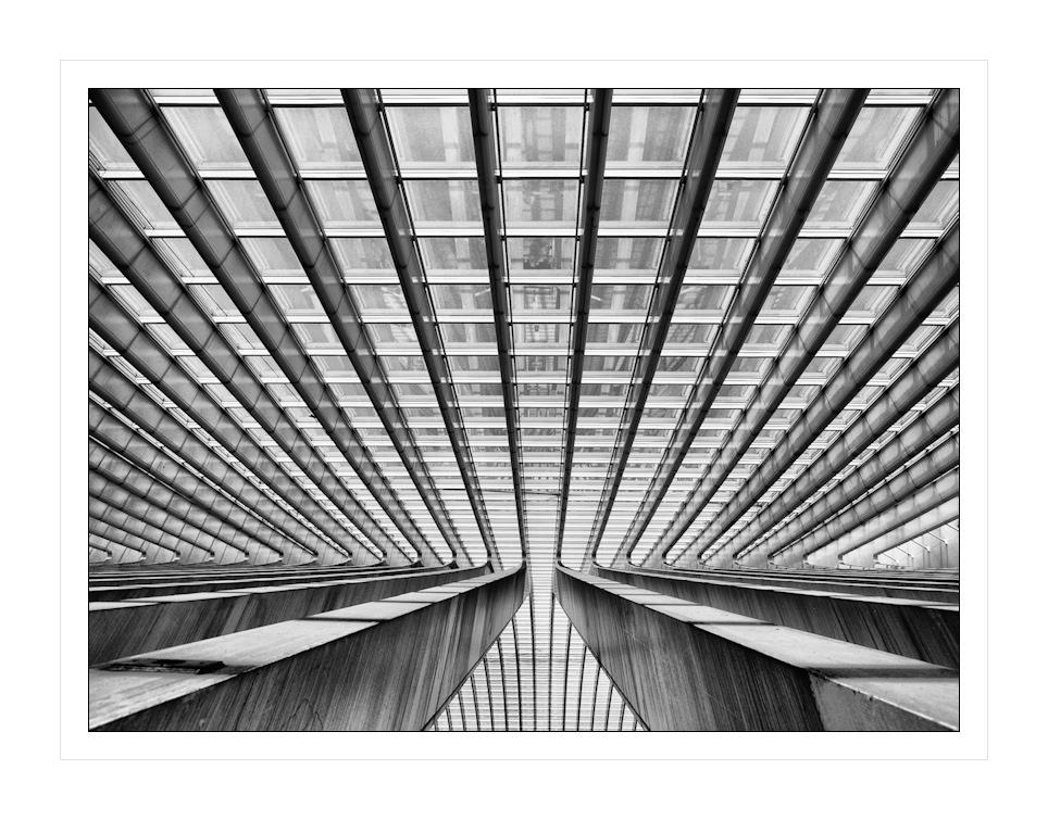 Calatrava VI