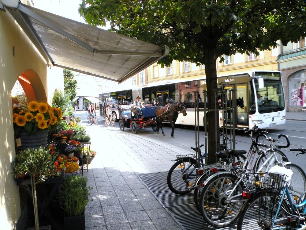 Calèche, vélo, bus, trois façons de se déplacer !