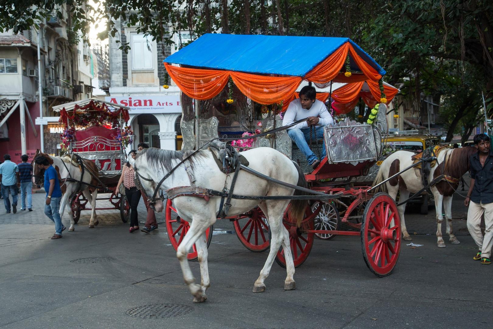 Calèches à Bombay, quartier Colaba