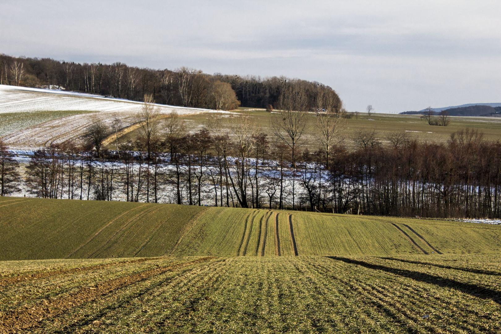 Calenberger Land - Tal zwischen Vörier Berg und Süllberg