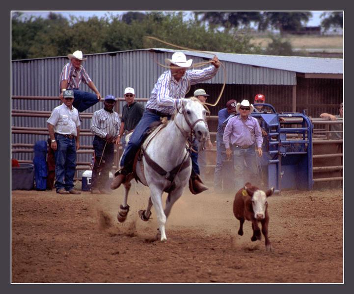 Calf Roping, TX