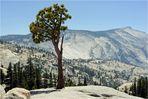 california 2011 05