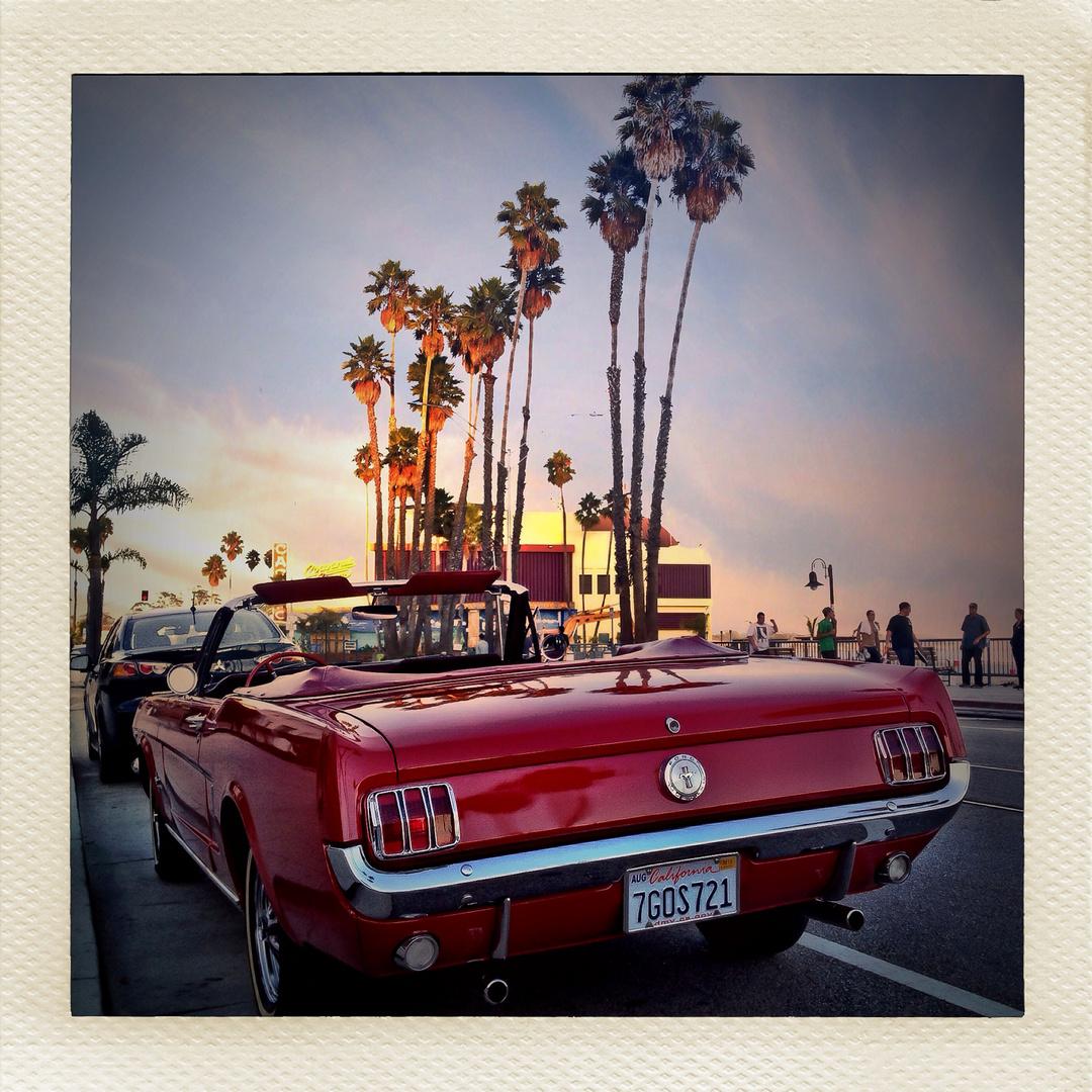 California Impressions #1