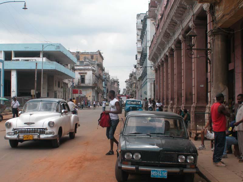 Callohueso-Habana