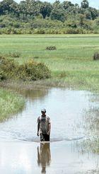 Cambodge 2006 rentrer du travail loin des bouchons