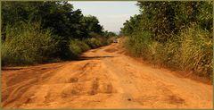 Cambodia- Der Weg nach Norden...