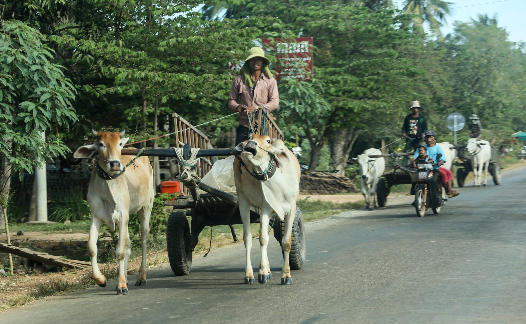 Cambodia-Logistik