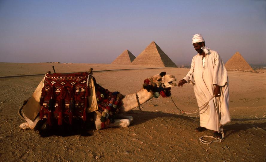 Camel 2 hire?