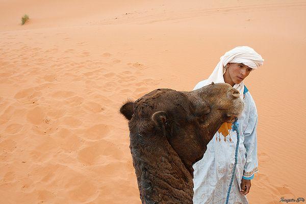 Camellero