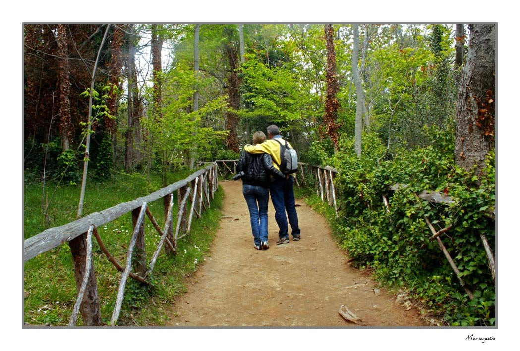 Caminando juntos