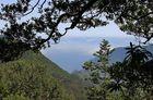 Caminho do Pinaculo e Folhadal, Madeira