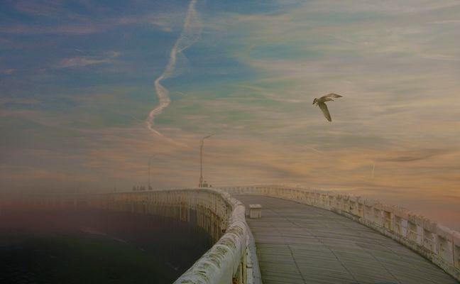 camino al cielo