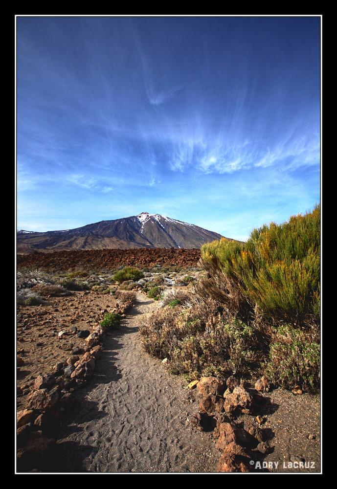 Camino al Teide