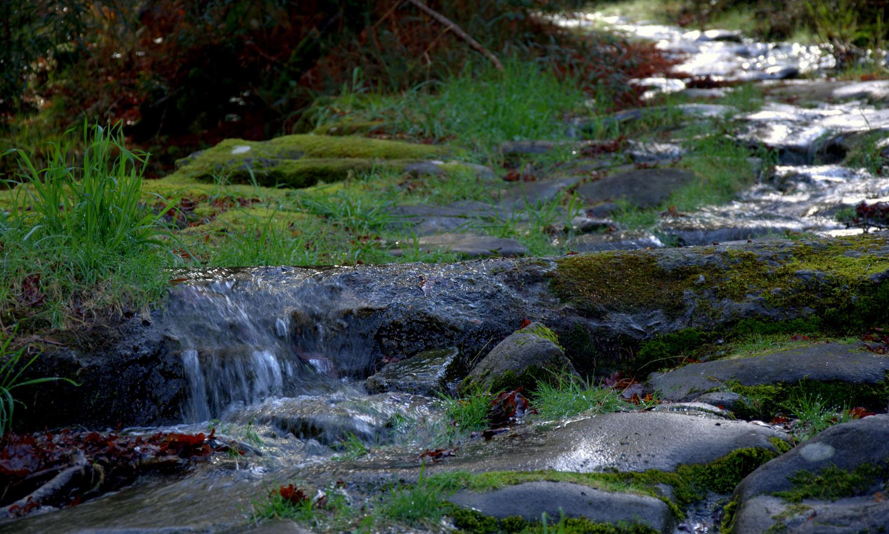 camino de agua