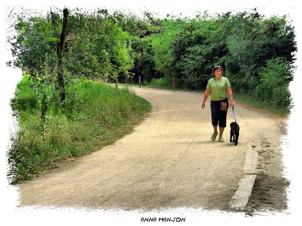 Camino de casa