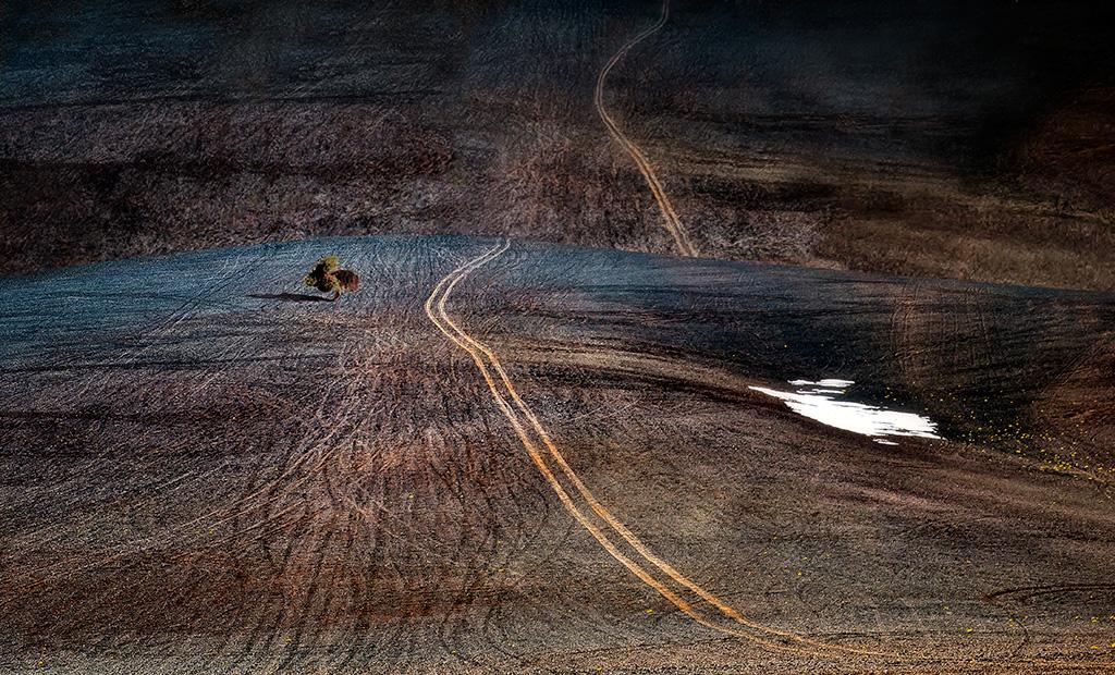 Camino de puna