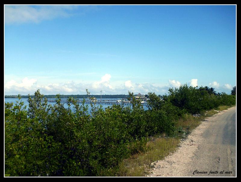 Camino junto al mar