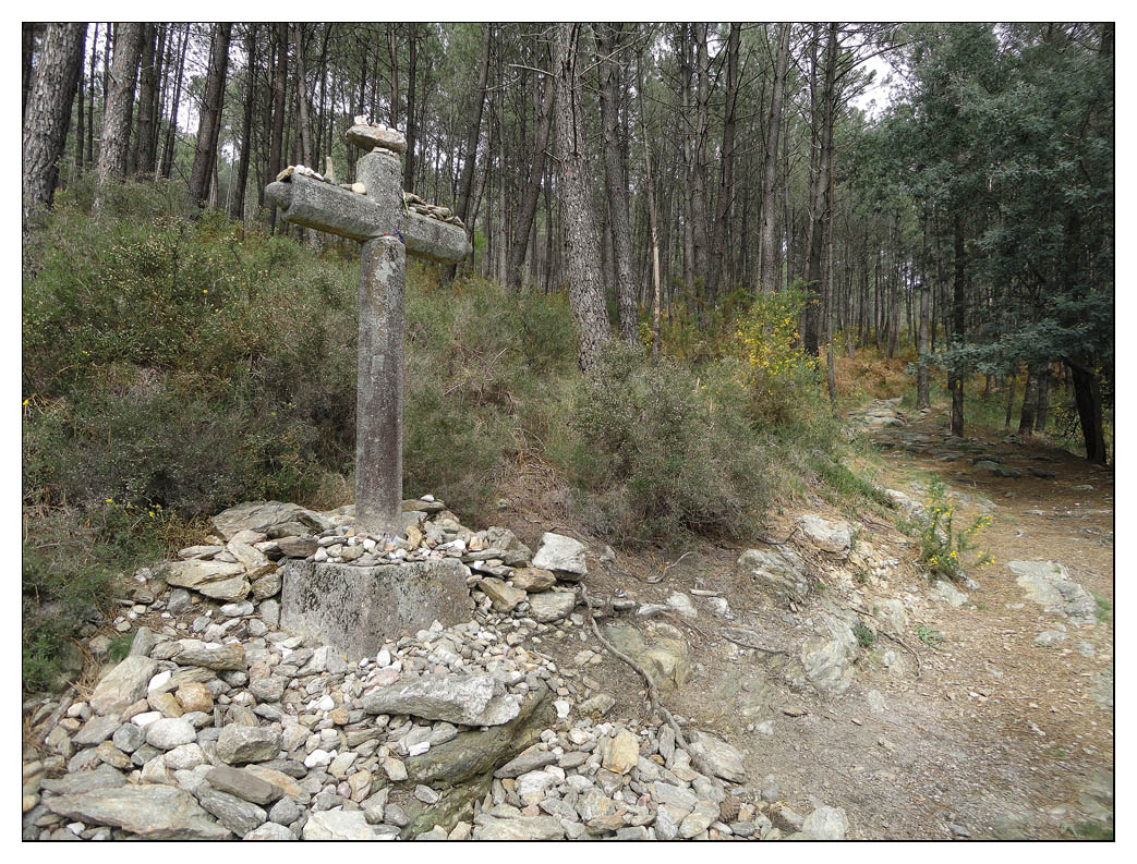 Camino Portugues 2011 (10)