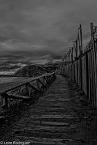 Camino Zarautz