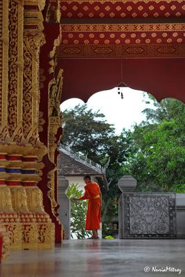 CAMINOS DE LAOS - El monje