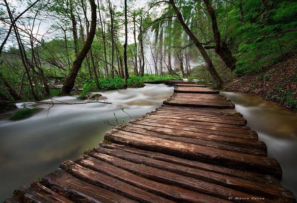 Camminando sull'acqua...