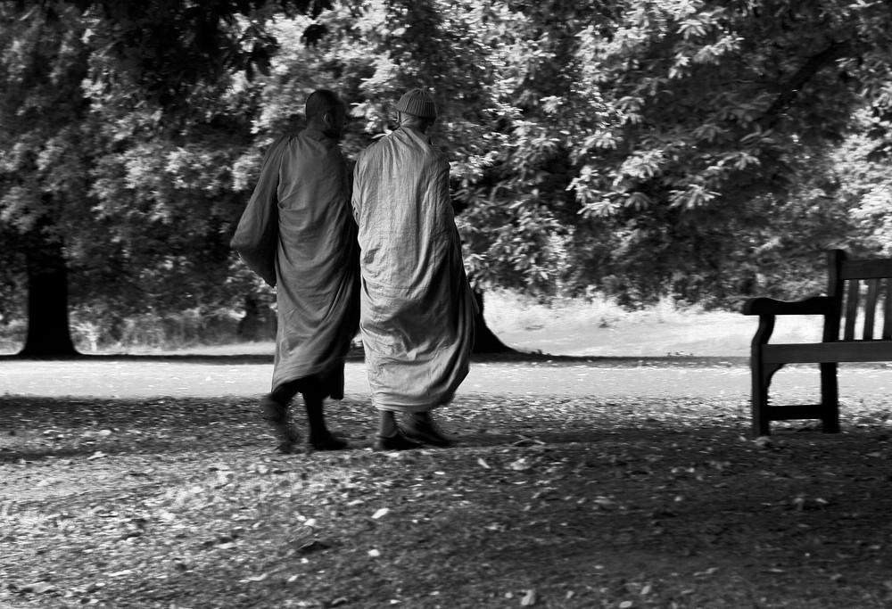 camminare meditando insieme
