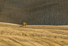 Campagna in val d'Orcia
