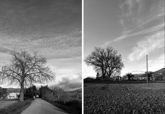 campi..strade..la nostra campagna....
