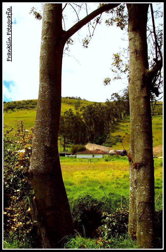 Campo en San Juan de Pasto.