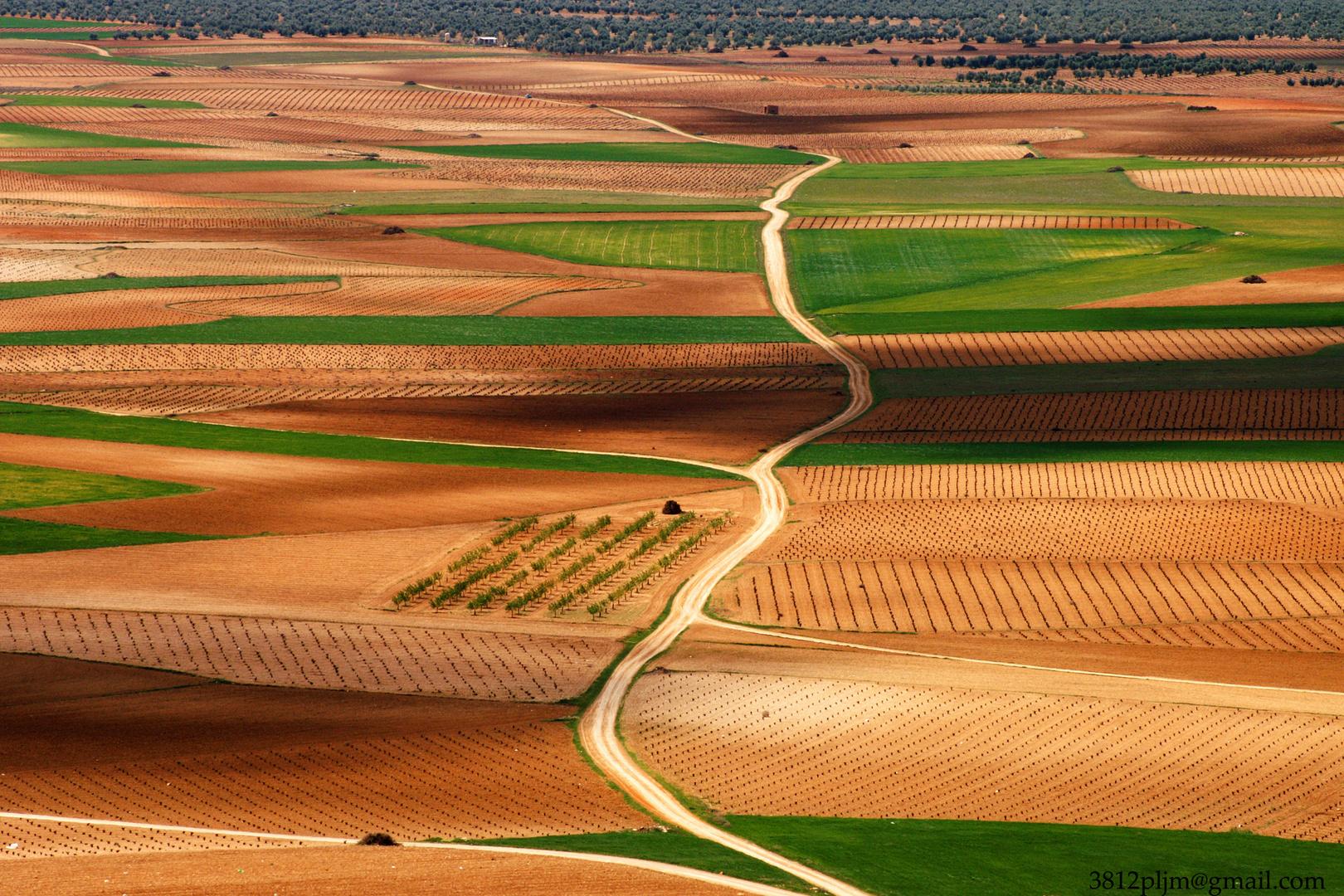 Campos de España....(1)