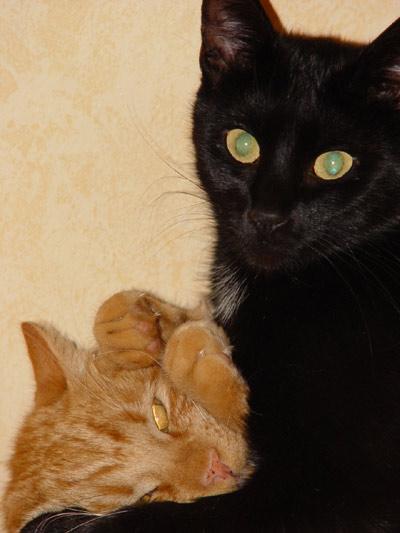 Camy und Pinky=))