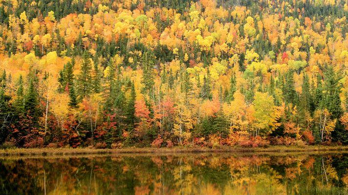 Canada couleurs d'octobre (3)