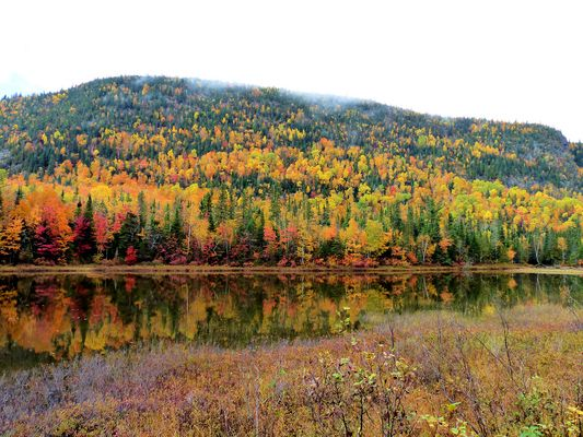 Canada couleurs d'octobre (4)