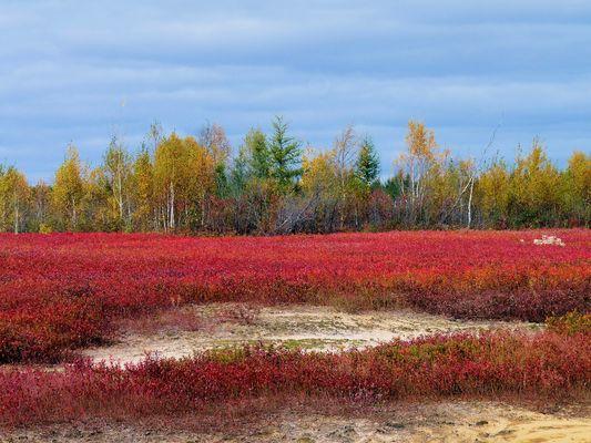 Canada couleurs d'octobre (8)
