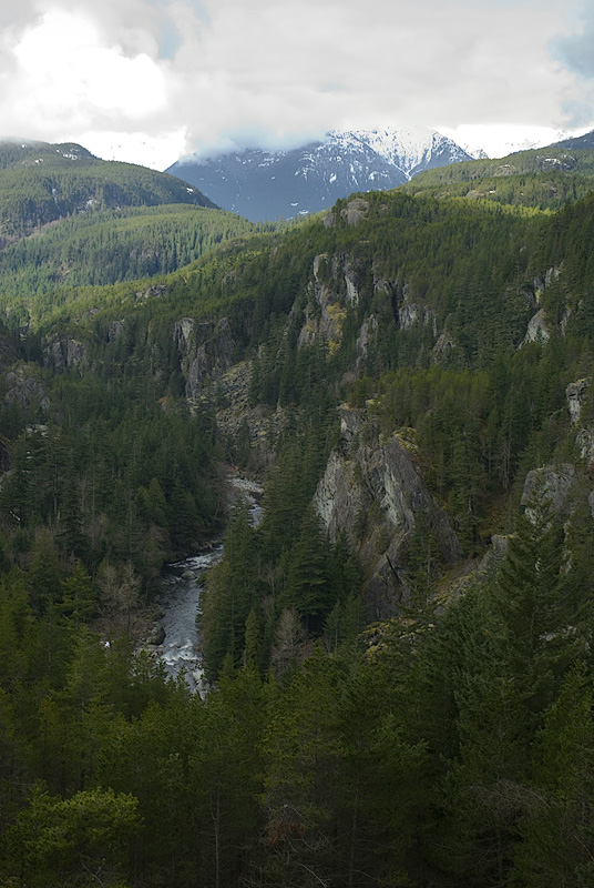 Canadian Rockies...