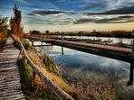 Canal Catarroja