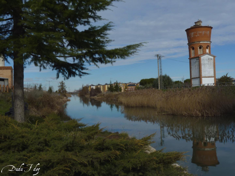 Canal de Castilla_Villamuriel de Cerrato. II