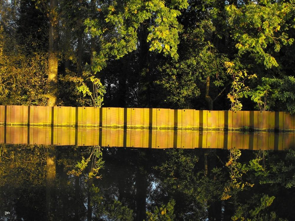 Canal de la Dendre octobre 08
