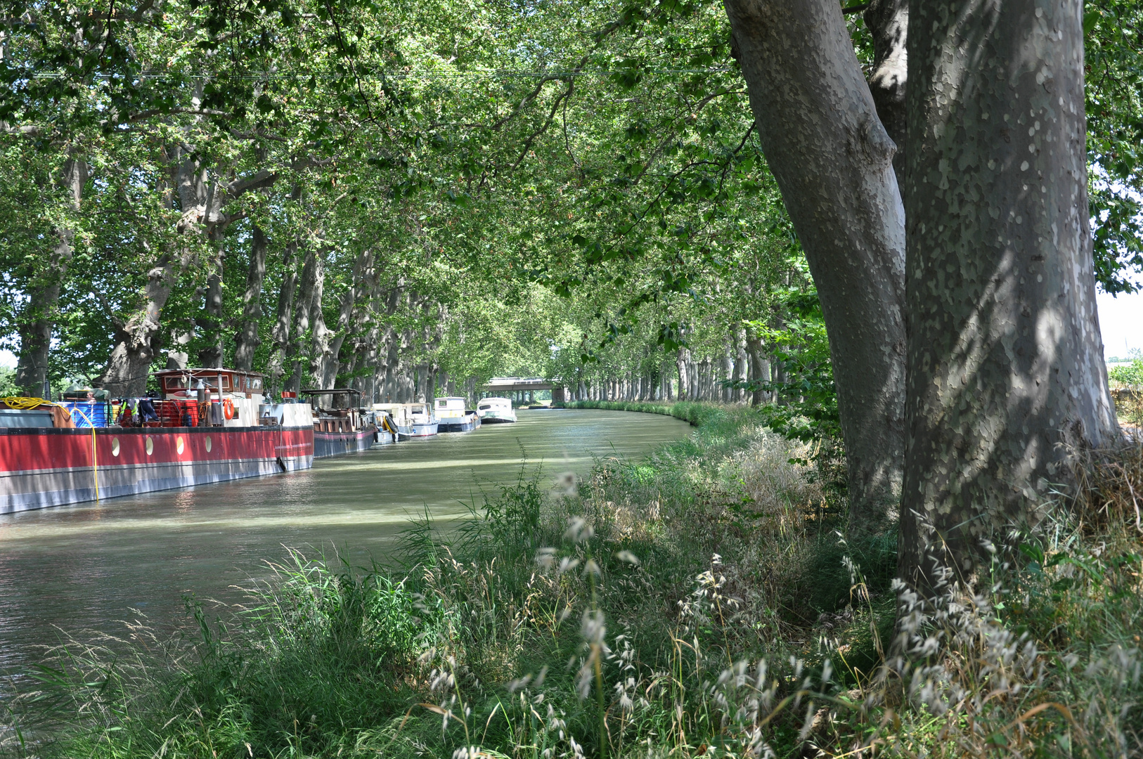 Canal de Midi ( Südfrankreich bei Beziers)