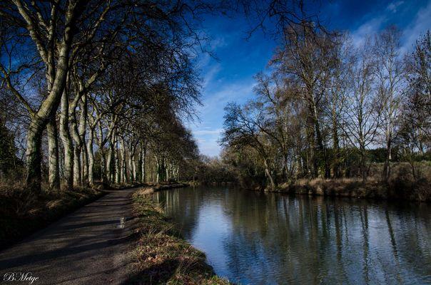 canal du midi en hiver