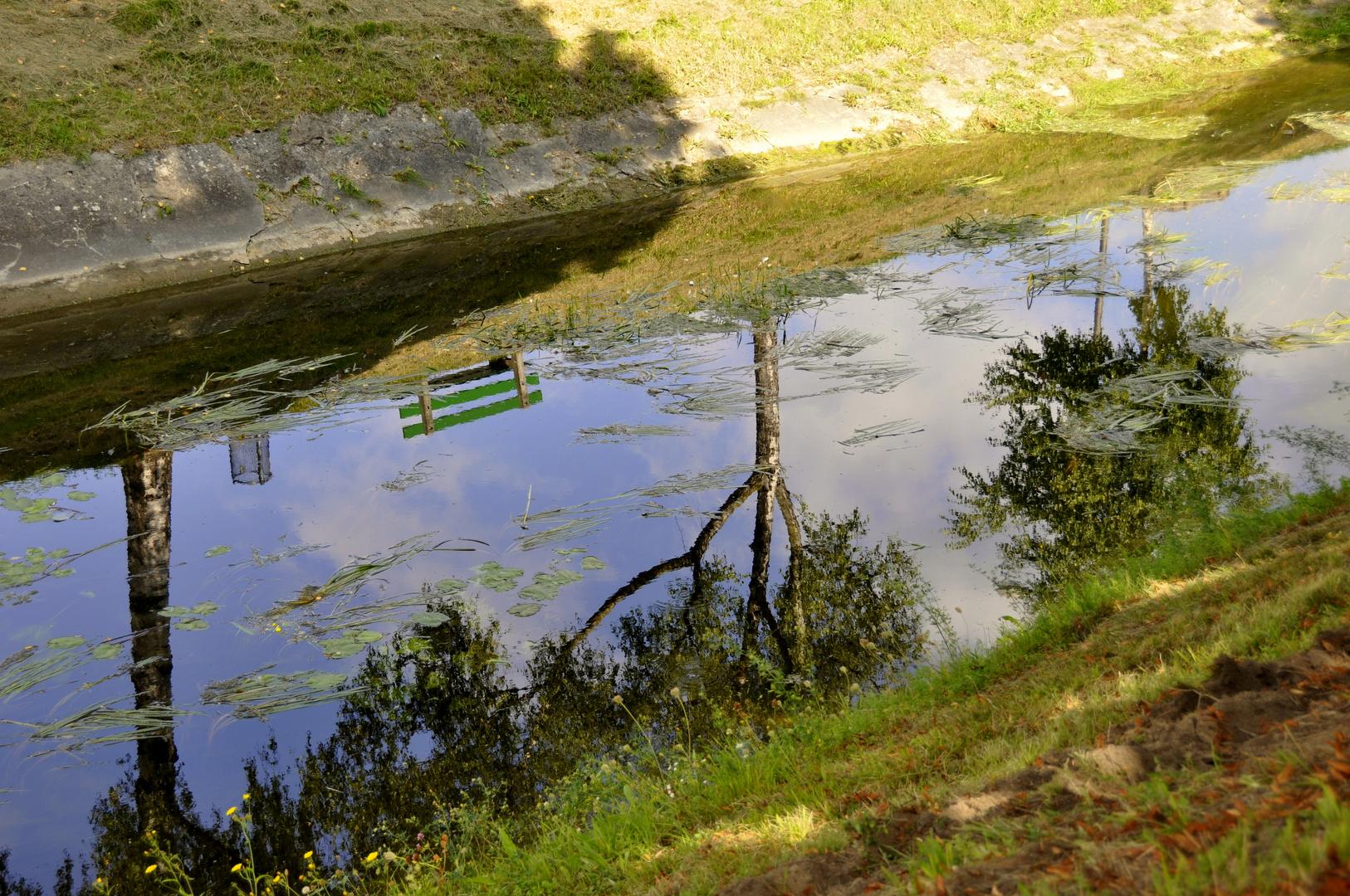 Canal Orient - Yverdon-les Bains