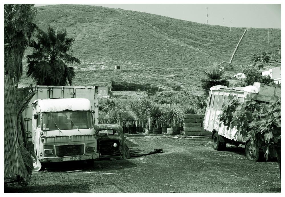 canarischer autofriedhof