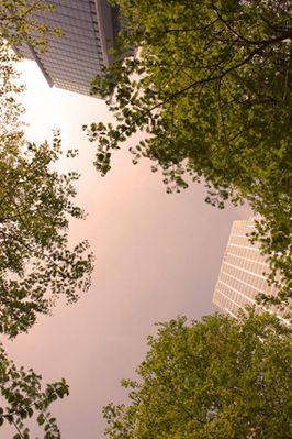 Canary Wharf - a personal perspective_5
