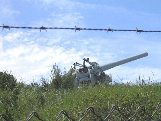Cannon in the dunes of Den Helder