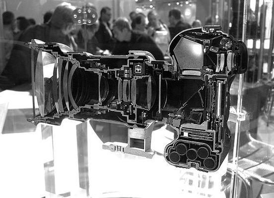 Canon EOS 1Ds (leider nur die Hälfte davon)