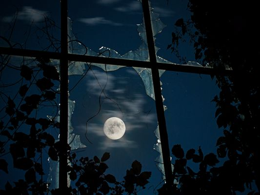 can´t fight the moonlight